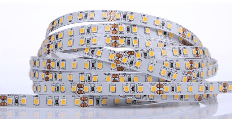 24V LED Strip Light