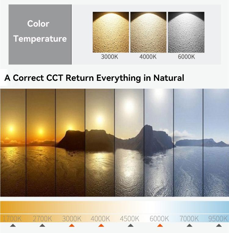 LED Surface Downlight CCT choose