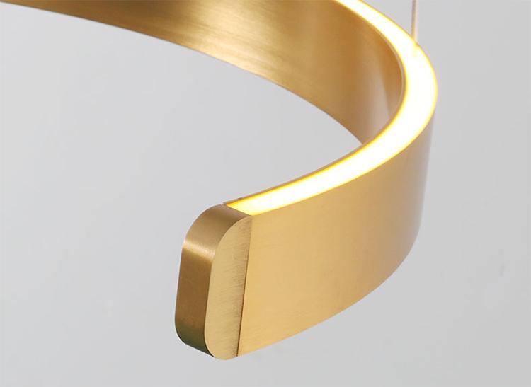 Black Ring Pendant Light detailed