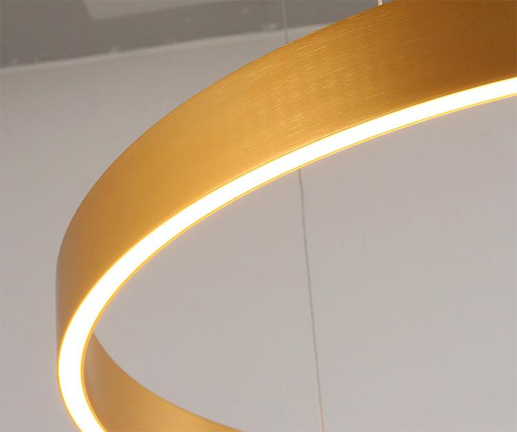 Black Ring Pendant Light details