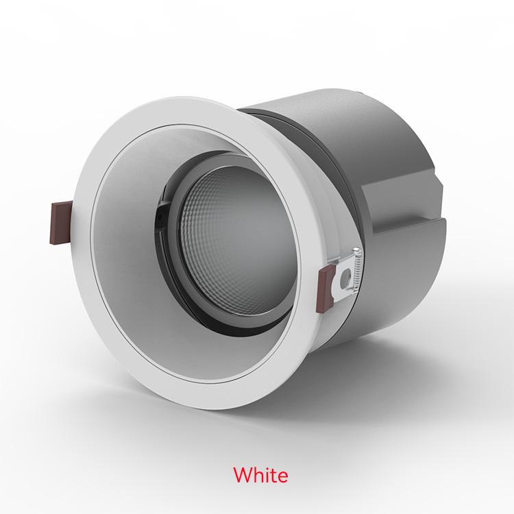 White LED Down Lights